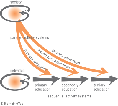 parallel and sequential (sub)activity systems across levels