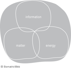 systems theory: substance mei - matter, energy, information