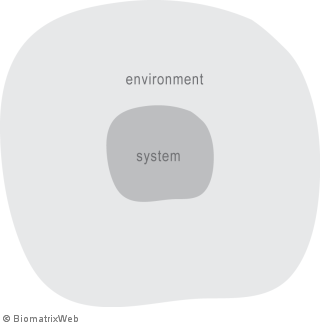 systems theory: system and its environment