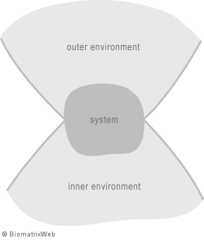 systems theory: outer versus inner environment