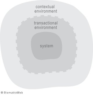 systems theory: transactional versus contextual environment