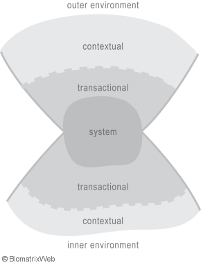systems theory: transactional versus contextual, outer versus inner environment