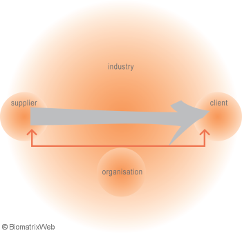 systems theory: ethos field of an activity system