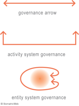 systems theory: governance