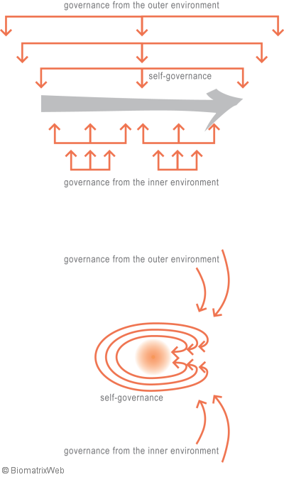 systems theory: levels of governance