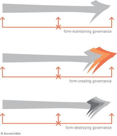 systems theory: types of governance