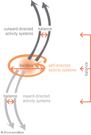 systems theory: balance within an entity system