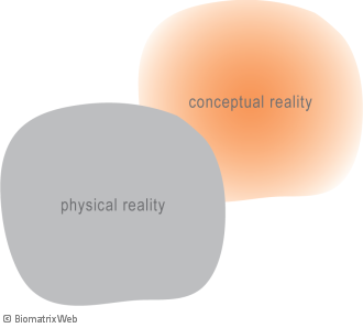 systems theory: physical versus conceptual reality