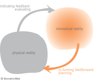 systems theory: interaction between physical and conceptual reality